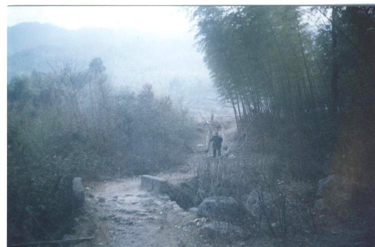 新宁瑶乡偏远山区农民盼修路,恳请给与资助!(图)