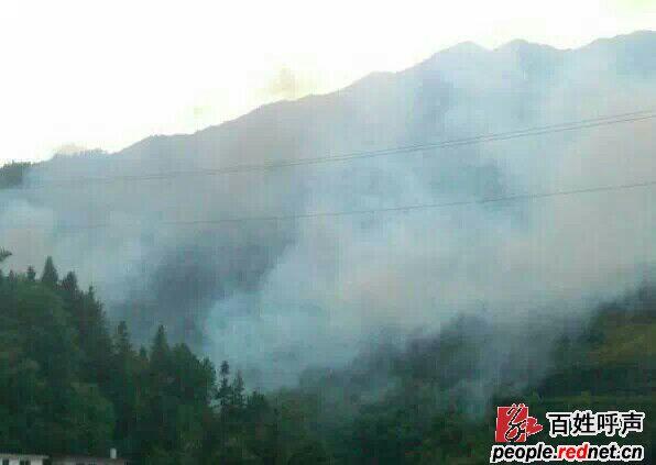 桂东县桥头乡昌桂铁合金厂排放有毒气体,危害居民身心健康(图)