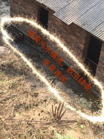 双峰县西亨冲村一猪场严重污染环境,人与猪谁更重要?
