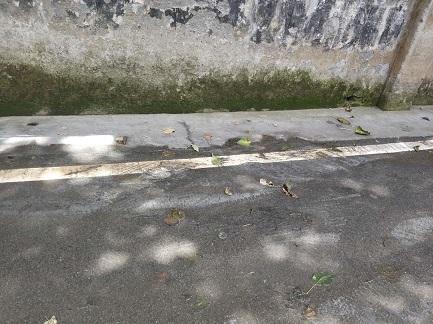 鹤城区都市春天马路上偷排废水,屎尿横流、臭气熏天